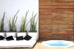 Plantas que ajudam a proteger a casa