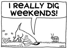 Westietude: I really dig weekends!