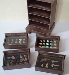 Collector's cabinet of gems, eggs and bones