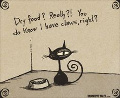 """Sometimes my daughter puts dry food in with wet food and they look at her like, . - Sometimes my daughter puts dry food in with wet food and they look at her like, """"Bitch, are you s - Crazy Cat Lady, Crazy Cats, Funny Cats, Funny Animals, Animal Humour, Animal Antics, Cat Comics, Cat Room, Dog Cat"""