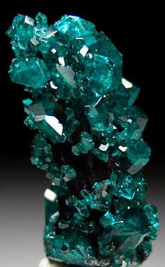 Bright Dioptase crystals that appear to be stalactitic in form but are actually overgrown on needle-like crystals of an unidentified brown mineral. The specimen is columnar in form with bright sparkly crystals on all sides.  From the James Houran thumbnail collection who obtained it from the Sacco collection.This specimen was part of the special exhibit 'African Thumbnail Treasures' at the 2012 Munich mineral show. The Dioptase is especially bright and sparkly.  via Amanda Hayek