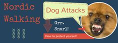 Defending yourself against dog attacks while Nordic walking