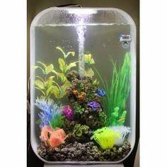 Aquarium Ideas, Aquarium Decorations, Biorb Fish Tank, Aquascaping, Water Features, Terrarium, Animal, Water Sources, Terrariums