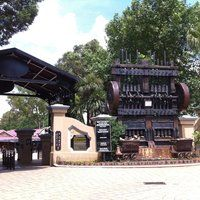Gold Reef City Theme Park - 49 tips Tower Of Terror, Anaconda, Tourism, Park, City, Outdoor Decor, Gold, Turismo
