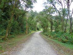 A Vila é rodeada por caminhos com largas alamedas e exuberante vegetação. Uma beleza apaixonante.