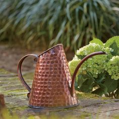 Birch Lane Copper Watering Can :: $45