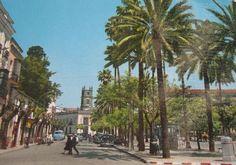 Alameda Cristina