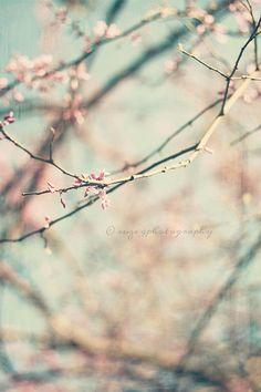 spring fever, via Flickr.