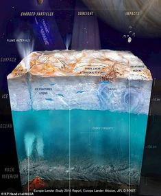 NASA scientists in Antarctica have tested a new underwater rover BRUIE that they believe could help them find life on Europa. Jupiter's Moon Europa, Jupiter Moons, Dna Molecule, Nasa Missions, Planetary Science, Brave New World, Space Exploration, Antarctica, Nature