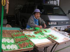 Vendeuse de Fugu. Wajima, péninsule de Noto. octobre 2010.