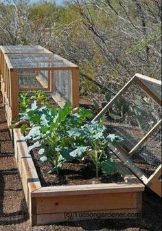Great Raised Garden Bed....that cover should keep the critters out!!!