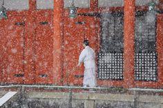 ONLY 2 spots left on the ladies ZENBU ZEN KYOTO WINTER CUISINE and CULTURE TOUR!!! Don't miss out! Kyoto Winter, Japanese Travel, Turning Japanese, Japanese Culture, Foodie Travel, Tour Guide, Winter Wonderland, Tokyo, Sunrise