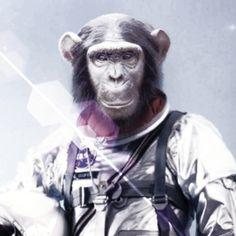 Bonobo Astronaut Radioes Chinese Citizen