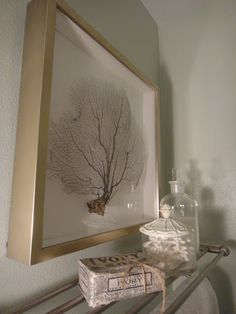sea fan, painted pink & framed in a shadowbox frame  --  Exceptionally Eclectic – Stripes