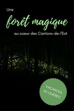 Voyage au Québec - Découvrez Coaticook, dans les Cantons-de-l'Est et son spectacle Foresta Lumina. Une prestation de son et lumière à l'ambiance magique, en pleine forêt! #quebec #quebecoriginal #voyageenfamille