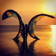 From liquiddreamsblogWe fly because we have wings!!! . . . #kite #kitelife #kiter #kitesurf #kitesurfing #kitesurfer #kiteboard #kiteboarding #kiteboarder #kiteboarden #flysurfing #flykites #flyhigh #skyhigh #inthesky #sunset #sunsetporn #sunsetsurf #surflife #kitesista #kitecouple #lovekite #lovekitesurfing #lifeisbetterwithakite #liquiddreams #waterismyelement #lovelife #sunsetlove #mermaidlife #oceanchildren #kitesurfing #kiteboarding #kitesurf #kiteboard