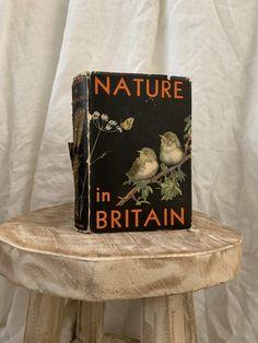 36' Nature in Britai