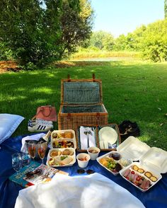 Picnics in the Country 🌿🍇🧀 // Just the two of us 🥂😍 Picnics, Time Travel, Countryside, Champagne, Bubbles, Wanderlust, Bucket, Lifestyle, Instagram Posts