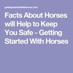 Facts About Horses will Help to Keep You Safe - Getting Started With Horses Horse Facts, Get Started, Horses, Horse