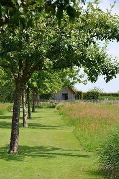 Jardin Plume - like the organised natural elements, Meadow Garden, Dream Garden, Garden Pool, Garden Landscaping, Yoga Garden, Landscape Architecture, Landscape Design, Cottage Garden Design, Contemporary Landscape