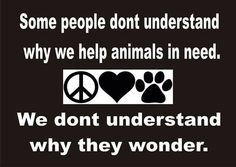 I have people ask me all the time why I give so much money and time to animal rescue. I tell them when dogs don't die for space my soul will be restored. Until then I will never give up!