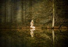 förtrollningen - Swedish nature blogger, Jonna Jinton re-creates John Bauer. More