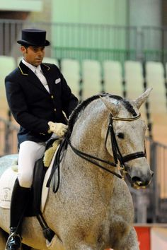 I want this horse