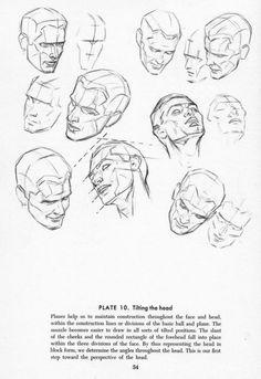 030 | Anatomy References for Artists via PinCG.com
