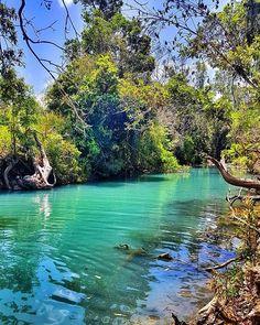 Cardwell Spa Pools Coast Australia, Australia Travel, East Coast, Road Trip, Spa, Island, Regional, Pools, Places