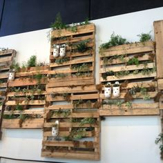 Packing crates as vertical gardens