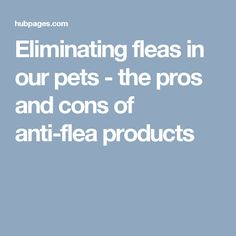 Eliminating fleas in our pets - the pros and cons of anti-flea products