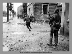American soldiers in Cherbourg. 1944