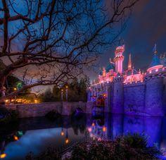 Twilight Tempest at the Disneyland Castle