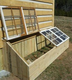 Use old windows to create a mini green house to protect your plants!