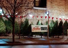 Christmas Tree Lot, love it! Christmas Tree Store, 1950s Christmas, Fresh Christmas Trees, Christmas Scenes, Christmas Past, Christmas Books, Christmas Images, A Christmas Story, Christmas Tree Decorations