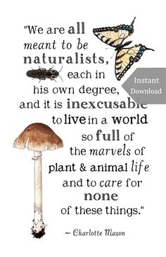 DIGITAL Poster Download - Meant to be Naturalists - 11 x 17 Poster - Charlotte Mason Quote - Educational, Natural History, Nature Study - $5.75