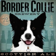 Border Collie Brewery artwork original graphic illustration signed archival artists print giclee 12 x 12. $39.00, via Etsy.