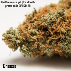 Use promo code DIRECT420 to save $25 every order. Canada 19+ No med card needed Discreet shipping #golddreams #golddreamsextracts #golddreamextracts