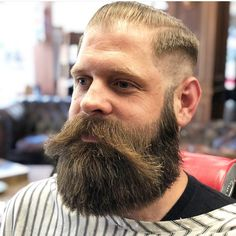 Walrus Mustache, Big Moustache, Beard No Mustache, Grey Beards, Long Beards, Hipster Beards, Long Beard Styles, Hair And Beard Styles, Beard Images
