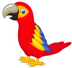 cute talking parrot bird animals buy clip art buy rh pinterest com clipart parrot outline parrot clipart flying