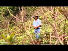 EPM -- Plan Planeta -- Los Pumas de Carolina del Príncipe