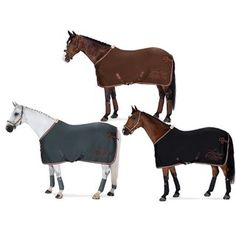 Sport, Horses, Queen, Animals, Horseback Riding, Embroidery, Deporte, Animales, Animaux