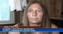 Woman Ignores Signs, Sticks Hand in Lion Cage, Lion Rips Off Finger, Woman Sues Zoo