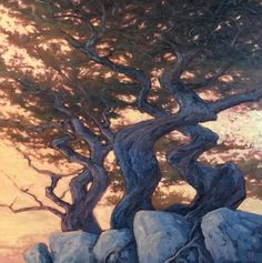 Wind-Sculpted By Cannon Beach Artist Michael Orwick buy the original or a custom print - <p>California Cyprus Trees along the Coast. </p>