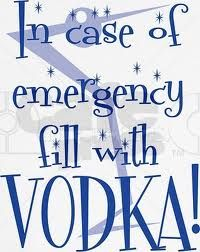 vodka quotes - Google Search Vodka Alcohol, Alcohol Humor, Vodka Quotes, Drinking Quotes, Funny Sexy, In Case Of Emergency, Wine And Beer, Ups And Downs, Make Me Happy