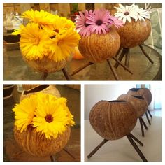 My DIY Handmade coconut shell vases. Simply do sanding and vanishing then put 3 twiggy sticks into it's holes as standing legs then put a little plastic cup inside before putting flowers.