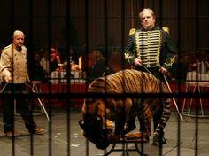 Los circos ya no exhibirán animales salvajes en Colombia - Mascotas 24/7