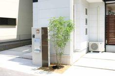 機能門柱×植栽/シマトネリコ