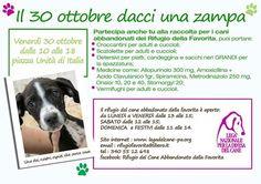 30/10 dai una zampa alla #LegadelCane di #Palermo: raccolta per i #cani abbandonati del #Rifugio #LaFavorita