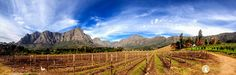The endless beauty and towering mountains of the Banhoek Valley, Cape WInelands. Wine Photography, Vineyard, Cape, Mountains, Outdoor, Beauty, Mantle, Outdoors, Cabo